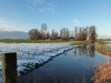 bonnehof-winter-06122012